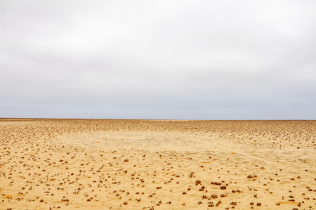 Landscape Background - Desert Plains with Promising Cloudy Skies Stock Photo