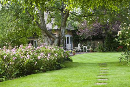 landscaping: English Cottage Garden, with small patio, in summer