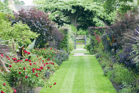 Grass path between flowerbeds with red roses and flowering plants, herbs leading to a metal gate and wooden bench under branchy tree, in a summer English garden . Stock Photo