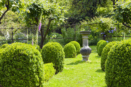 Stone ornamental vase on a grass path between buxus rounded topiary shrubs leading to a wooden arch with flowering clematis, in a cottage garden in rural England countryside .