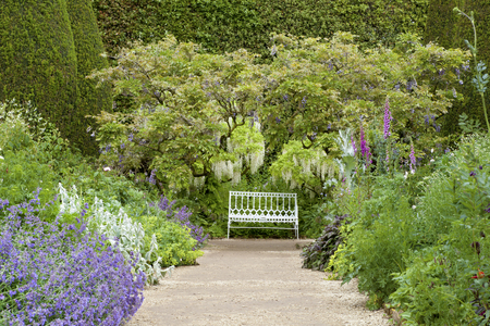 White bench under white wisteria tree at the end of stone path in summer garden with cottage flowers in bloom