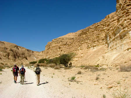 vadi: Hiking in Vadi Barak, Negev desert.The Negev is the desert region of southern Israel. The indigenous Bedouin citizens of the region refer to the desert as al-Naqab