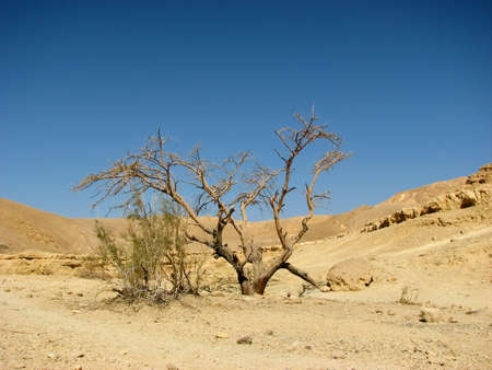 arava: The Arava desert, different colored sand and stones. Eilat mountains.Israel. Stock Photo