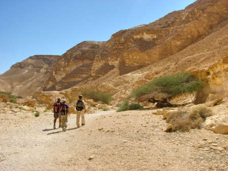 vadi: Hiking in Vadi Barak, Negev desert.The Negev is the desert region of southern Israel. The indigenous Bedouin citizens of the region refer to the desert as al-Naqab.