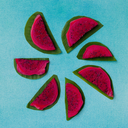 Colorful overhead still life of red dragon fruit slices on a bright blue textured background with green leaves. Vegan healthy food concept. Contrast tropical fruit in flower shape composition.