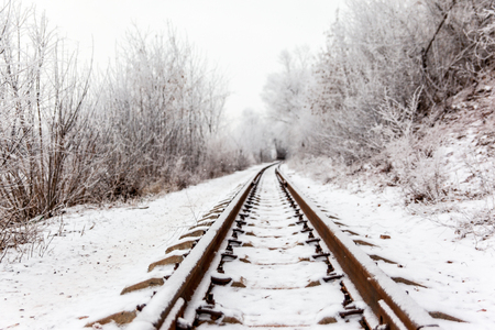 An empty railway among the bushes covered with hoarfrost. Winter landscape with transport ways for trains. Stock Photo
