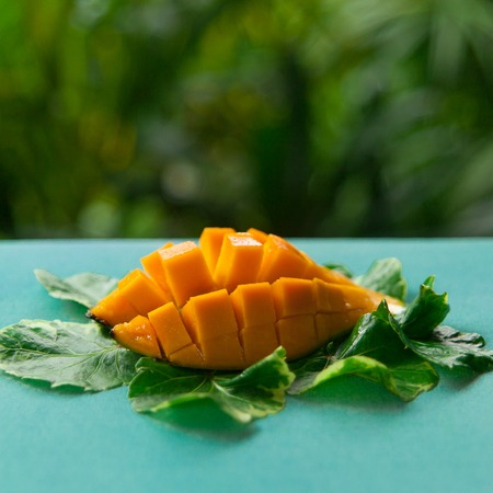 Still life of juicy tropical fruit and green leaves on a texturred turquoise canvas on green nature background. Vegan food: orange mango diced on bright blue surface. Stock Photo