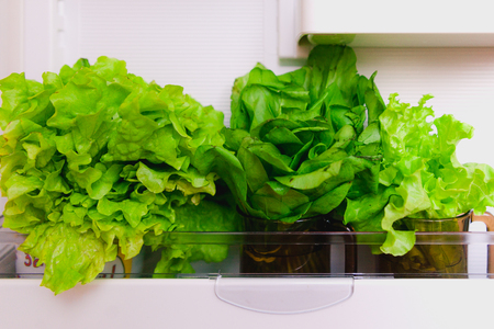 Open fridge with greens inside on white shelves. Salad and sorrel in glasses on the refrigerator door. The concept of a healthy diet. Imagens