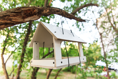 White wooden bird feeder hanging on a branch of green tree. Nature care concept