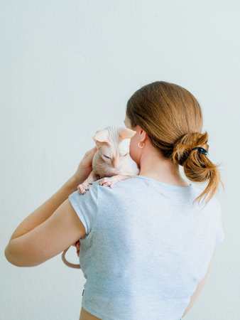 Woman petting hairless cat Don Sphynx breed with pink naked skin on her shoulder. Stock Photo