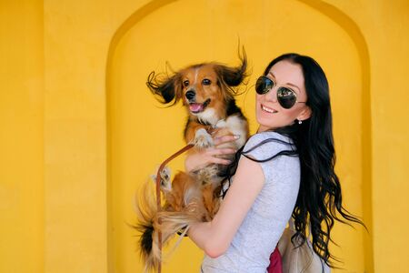 Portrait of Brunette woman and her dog on background of bright yellow wall. Funny spaniel mutt with big ears.