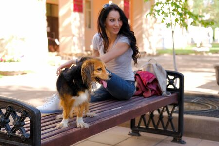 Brunette woman is sitting on wooden bench with her dog. Funny spaniel mutt in summer city.