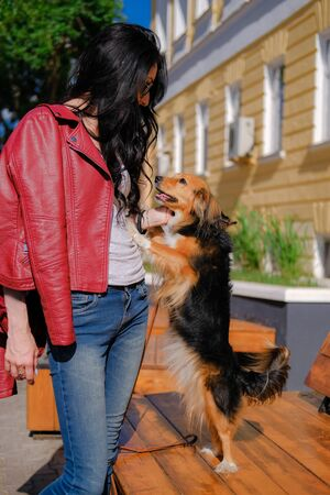 Funny spaniel mutt hugs female owner standing on hind paws. Dog walking on the street.