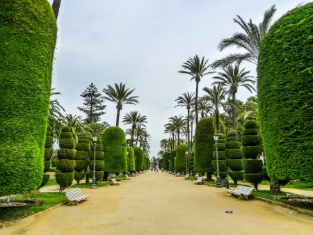 Genoves Park in Cadiz photo