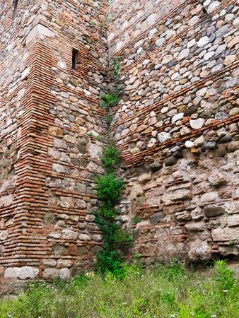 alcazaba: Wall climbers in the Alcazaba de Mlaga