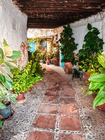 Street with pots and florida in typical Andalusian village