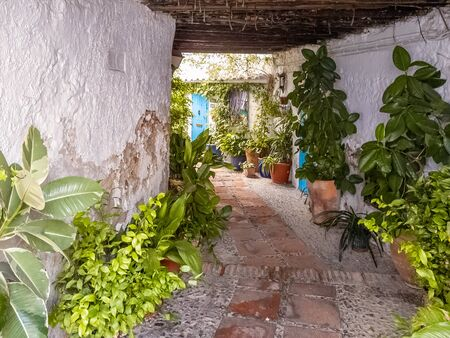 Street with pots and florida in typical Andalusian village Foto de archivo