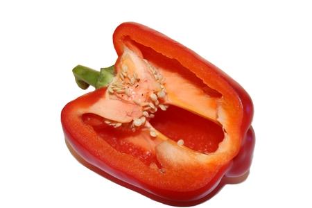 bell peper: The red capsicum on the white