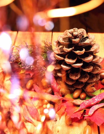 autumn motif: Autumn decoration motif with pinecone, beans, heather and other fall objects on wooden background with reflectons