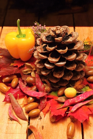 Autumn decoration motif with pinecone, beans, heather and other fall objects on wooden background with reflectons photo