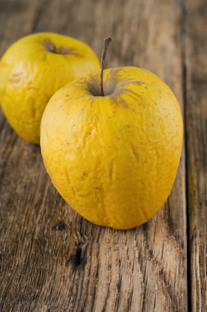 overripe: Vertical photo of two overripe yellow apples. Fruit has groovy skin. All is placed on old wooden table board. Stock Photo