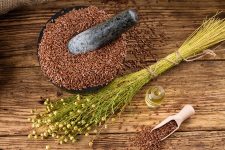 a seed: Horizontal photo with a bunch of flax plants with dried blooms bonded by natural cord placed on old wooden board and with burlap around which is near to bottle with flax oil and heap of flax seeds.