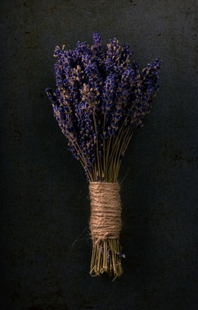 bonded: Vertical photo with single bunch of lavender flower bonded by natural cord with vintage mood. Purple blooms are dry as a rest of plant. Grey dark worn baking tray is used as background. Stock Photo