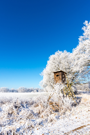 Vertical photo with winter scene landscape. Brown wooden hunting hideout next to trees covered by frost stands on snowy field behind frosted reed and bush. Sky is blue and clear. Stock Photo