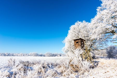 Horizontal photo with winter scene landscape. Brown wooden hunting hideout next to trees covered by frost stands on snowy field behind frosted reed and bush. Sky is blue and clear. Stock Photo