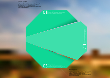 Illustration infographic template with motif of green octagon randomly divided to three sections with simple signs. Blurred photo with natural motif with field and cloudy sky is used as background. Illustration