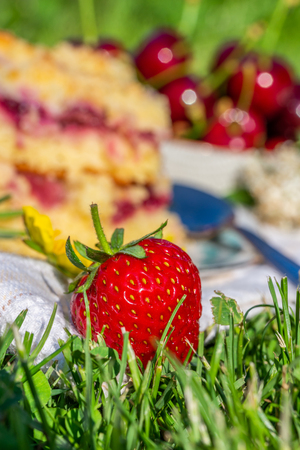 Vertical photo with detail of ripe red strawberry. Fruit is placed on white towel in a garden with two portions of cherry cake. Next cherries are placed in background in bowl. Stock Photo