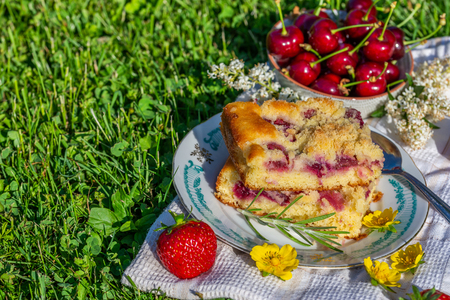 Horizontal photo with two portions of cherry cake. Cake is placed on saucer and on white towel. Bowl full of other fruits is next to cake with several red strawberries and blooms.