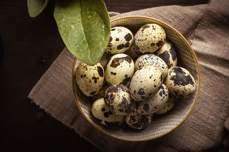 Horizontal photo with top view on ceramic bowl full of quail eggs. Eggs have nice texture with brown spots. Bowl is placed on light cloth and dark wooden board.