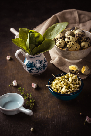 Vertical photo of several bowls on dark wooden board. Bowls contains mung bean sprouts, green spinach and spotted quail eggs. Juniper berries and daisy blooms are spilled around. Stock Photo