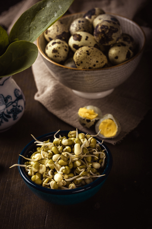 Vertical photo of several bowls on dark wooden board. Bowls contains mung bean sprouts, green spinach and spotted quail eggs. Bowls have various colors. Stock Photo