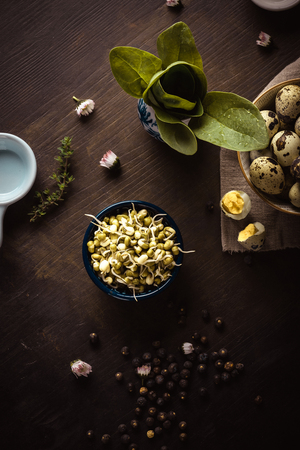 Vertical photo with top view on several bowls on dark wooden board. Bowls contains mung bean sprouts, green spinach and spotted quail eggs. Juniper berries and blooms are around.