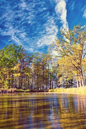 Vertical photo with small lake. Photo is captured in autumn with several trees around with colorful leaves. Sky is blue with dramatic sky.