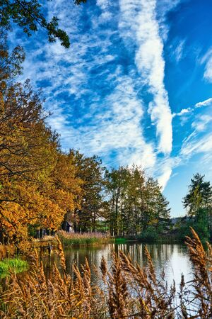 Vertical photo with view over small pond in autumn season. Orange grass and colorful trees are on sides. Sky is blue with white clouds.