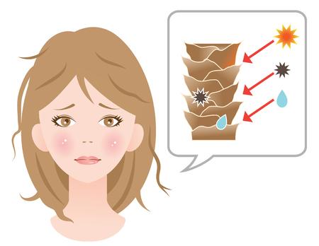 dañado mujer cutículas del cabello Ilustración de vector