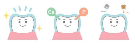 fluoride: effects of fluoride on teeth Illustration