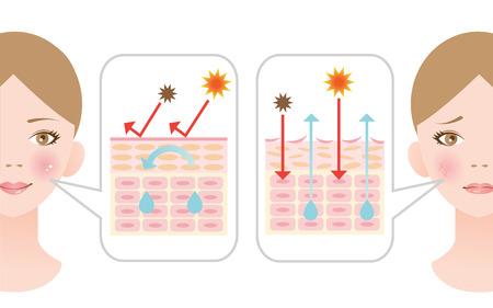 dry skin: dry skin and healthy skin
