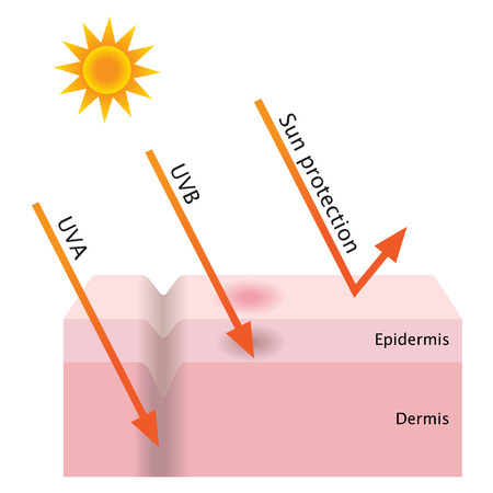 UV penetration and sun protection Illustration