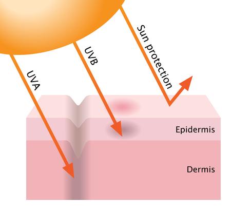 la penetración de los rayos UV y protección contra el sol Ilustración de vector