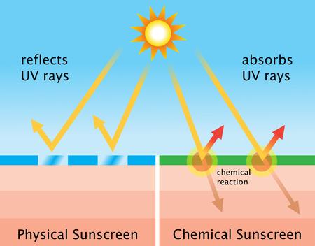 化学日焼け止めと物理的な日焼け止めの図 写真素材 - 80258301