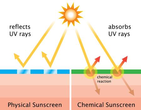 Los protectores solares físicos reflejan los rayos del sol. Los filtros solares químicos absorben los rayos UV en una reacción química que disipa el calor hacia atrás de la piel. Foto de archivo - 80258304