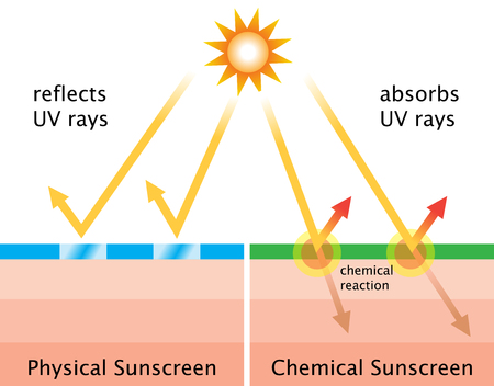 Physical sunscreens reflect the sun's rays. Chemical sunscreens absorb UV rays in a chemical reaction that dissipates the heat back off the skin. Ilustração