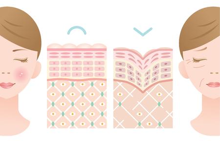 Frauengesicht mit verdrehter fallender alter Haut und junger gesunder Haut Standard-Bild - 85564026