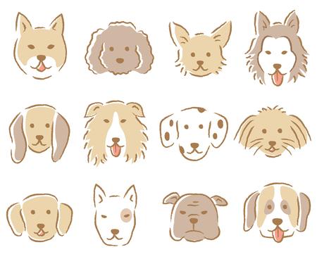 Caniche, chihuahua, husky, beagle, dalmatien, colley, retriever, bull terrier, poméranie Banque d'images - 92023822