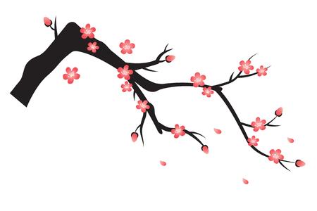 pruimenbloesem. Aziatische traditionele bloemillustratie Stock Illustratie