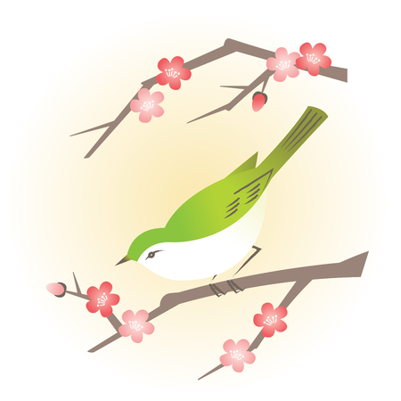 Branch with traditional Asian spring blooming flower and a green bird.